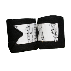 Note musicali di bande di polo