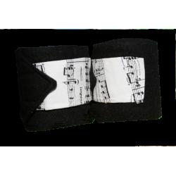 Bandes de polo Notes de music